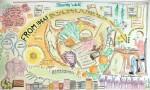 Food Banks In The Basin Mural