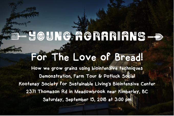 Young Agrarians - For the Love of Bread!